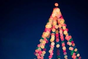 holiday-tree-lights